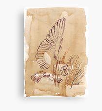 Barn Owl hunting 1 Canvas Print