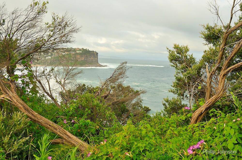 """Split View"" - Bungan Beach , Sydney NSW Australia by Philip Johnson"