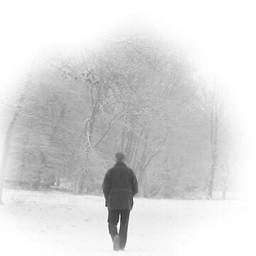Winter Woods by djjaap