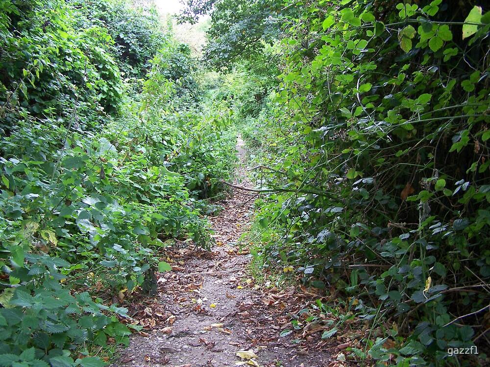 hidden walkway by gazzf1