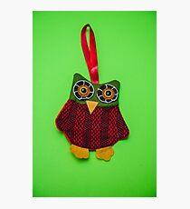 Cute owl decoration Photographic Print