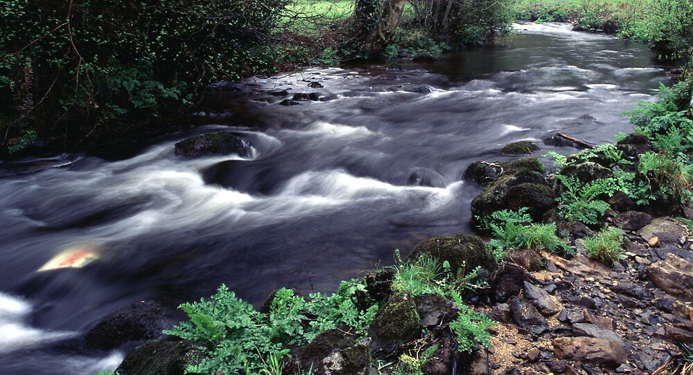 River Bovey in Full Flow by kitlew