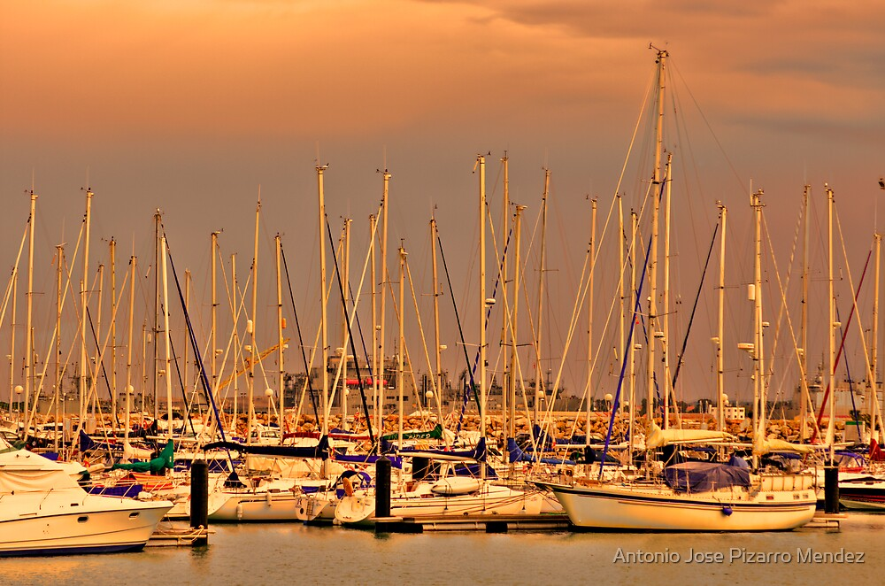 Harbour of Rota by Antonio Jose Pizarro Mendez