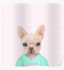 Portrait Of French Bull Dog Poster