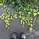 Green ivy black shoes by Victoria McGuire