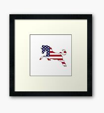 American Flag – Horse Framed Print