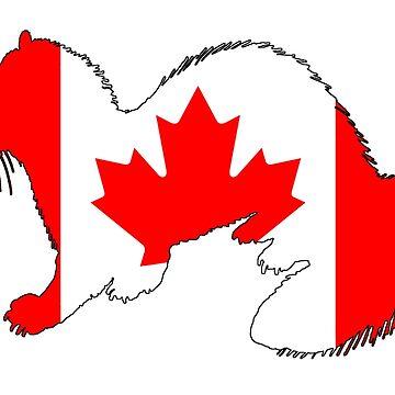 Canada Ferret by DelirusFurittus