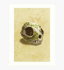 cat skull decorated with wasabi flowers Art Print