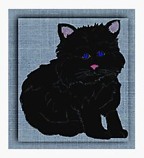 Kitten Cat Black Blue Eyes Photographic Print
