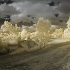 infrared pan at the lake by BigAndRed