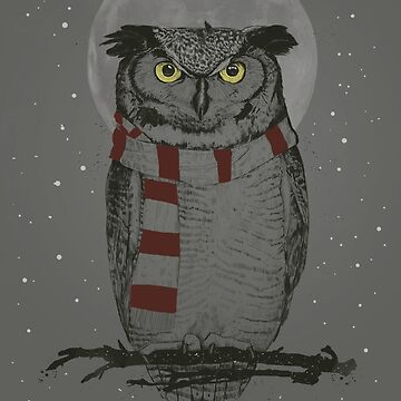 Winter owl  by soltib