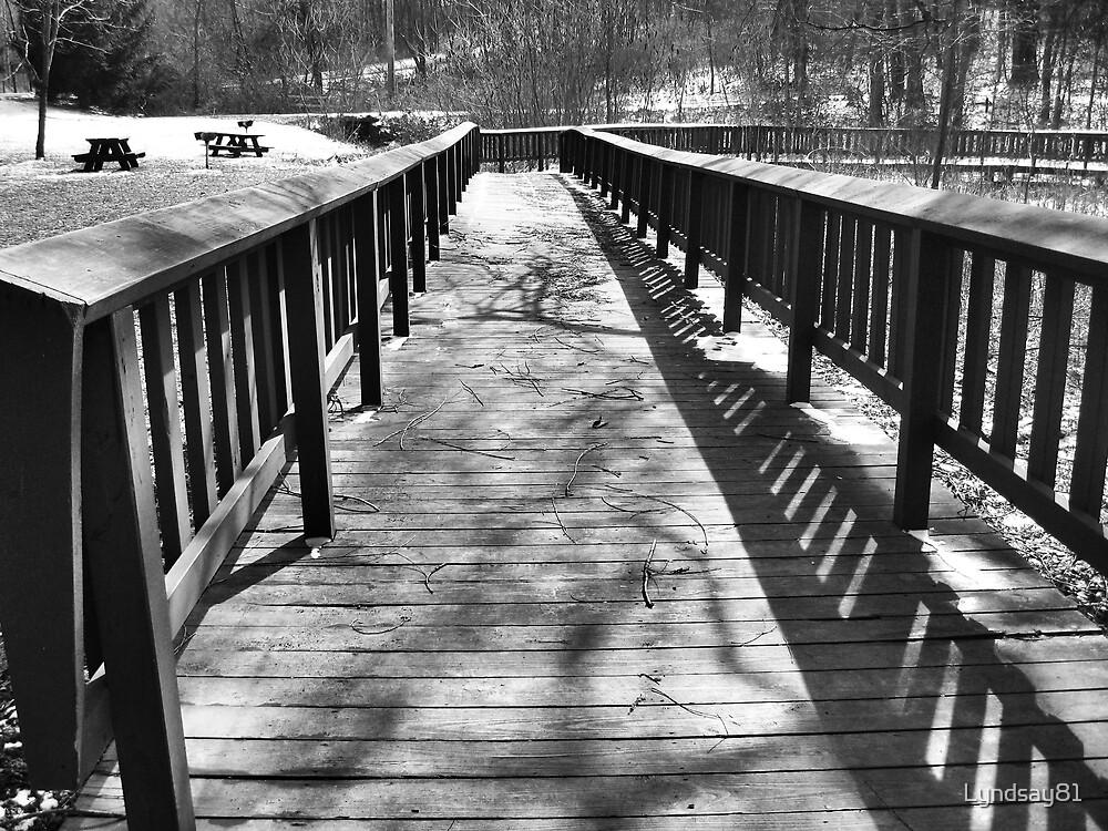 Long Bridge by Lyndsay81