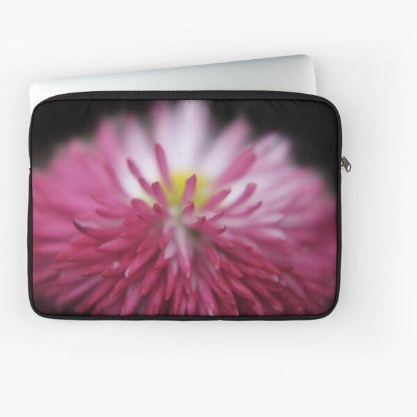 flowers on black - Bellis close-up Laptoptasche