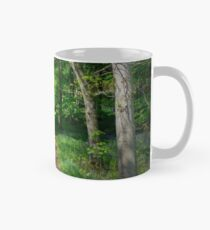 Out of the Woods.. Mug