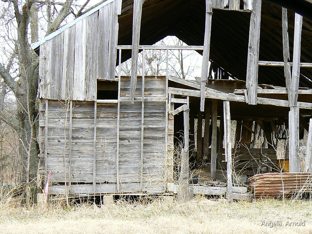 old barn by Angela  Arnold