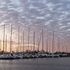 Pink Masts - Soft Marina Sunrise by Georgia Mizuleva