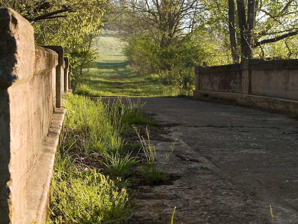 Bridge to Nowhere by Michael J