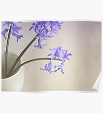 Blue- purple flowers in white china cup. Poster