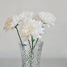 Creamy white flowers in tall vase. by Lyn  Randle