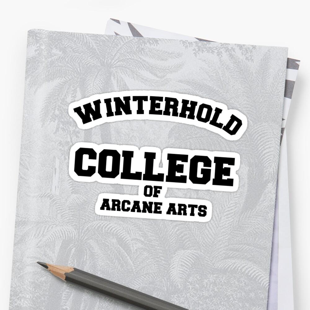 Winterhold College T Shirt by RoleyShop