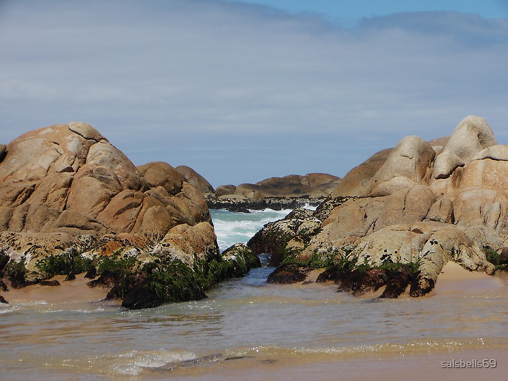Clinton Rocks by salsbells69