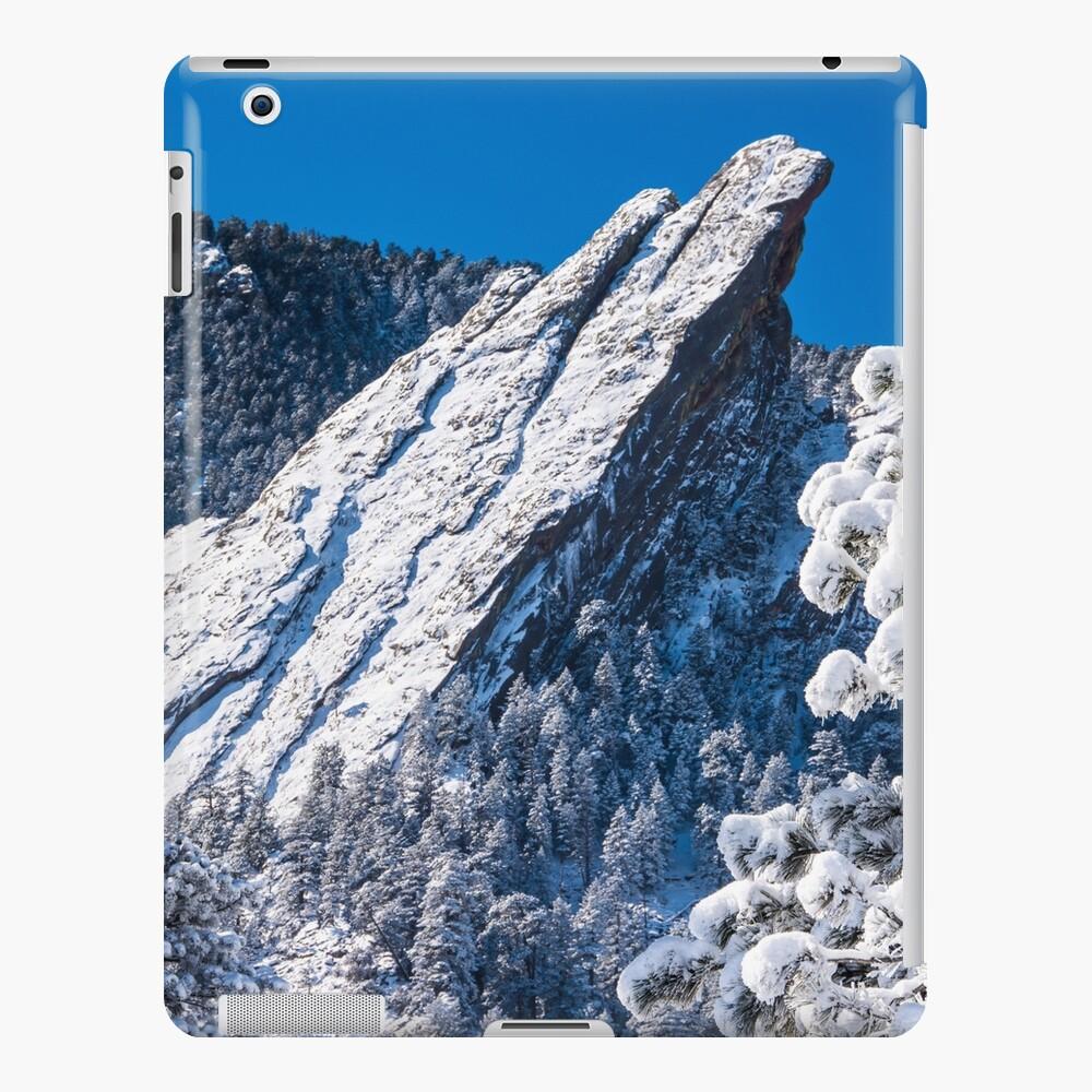 The Third Flatiron - Through The Trees iPad Case & Skin