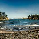 Morning on the Bay by Steve Walser