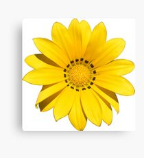 Geschenkidee Blumen Canvas Print
