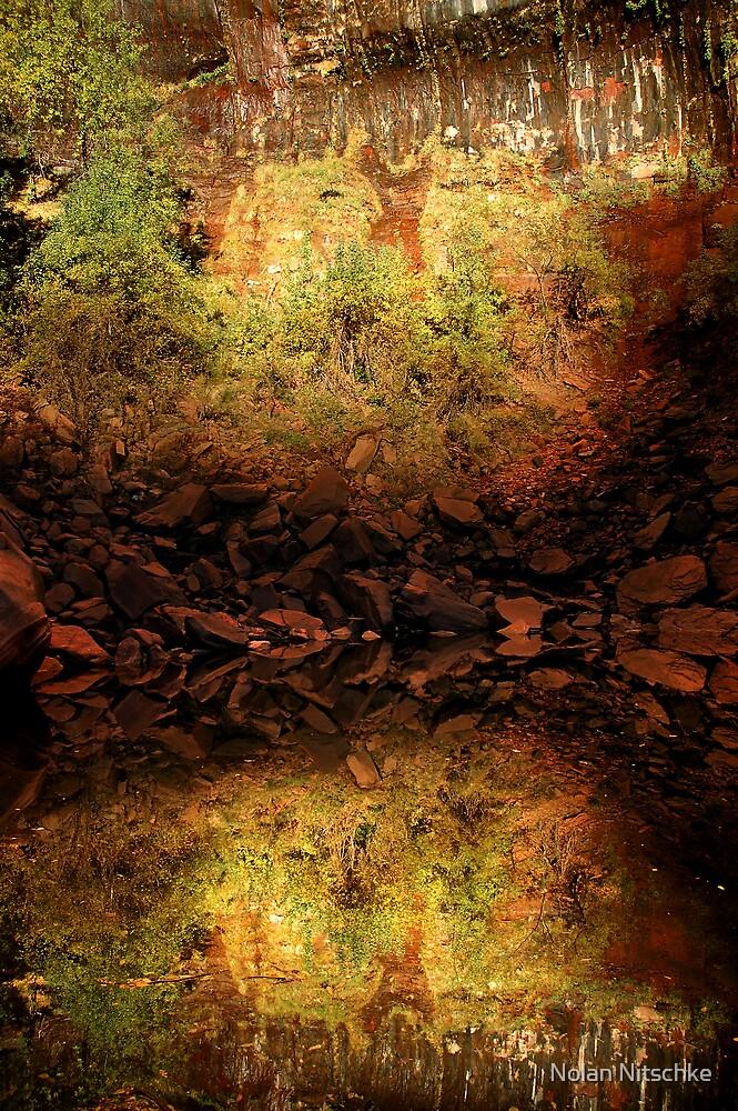 Upper Emerald Pool, Zion by Nolan Nitschke