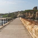 The Priory from the Pier by Alan Rodmell