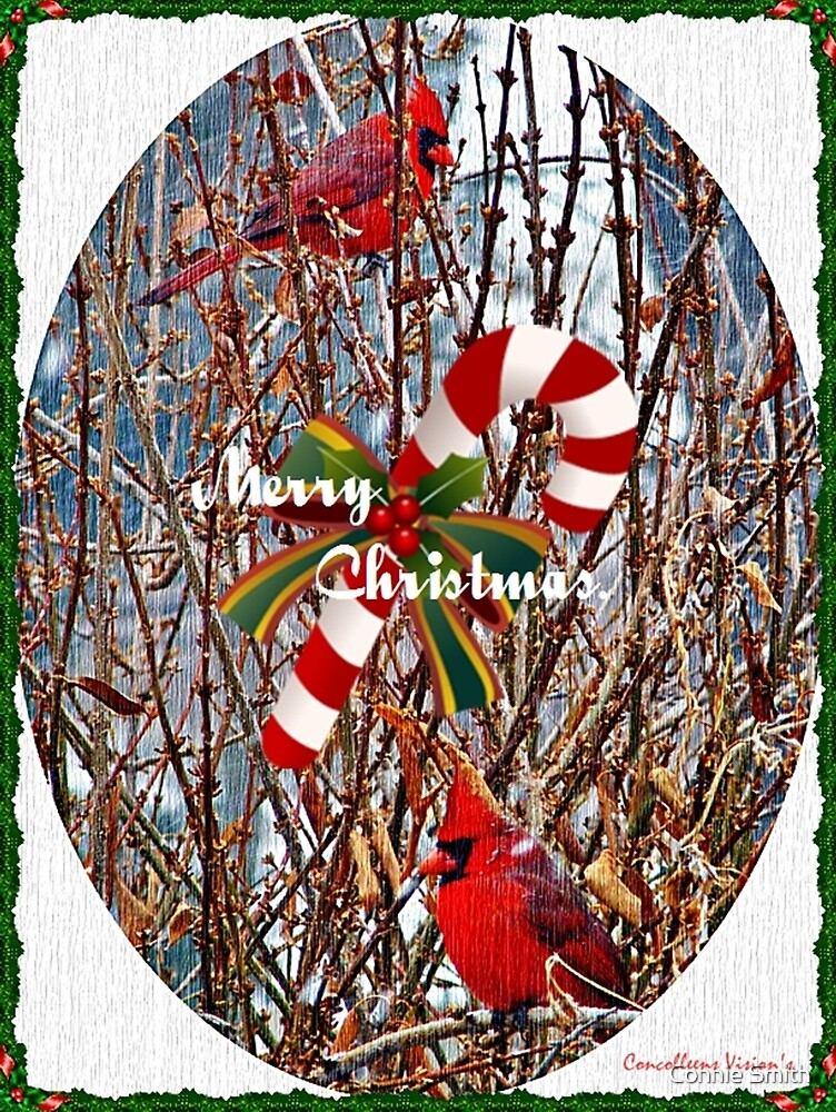 Merry Christmas by Connie Smith