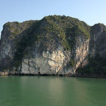 Ha Long Bay, Vietnam 2 by shawnzahavi