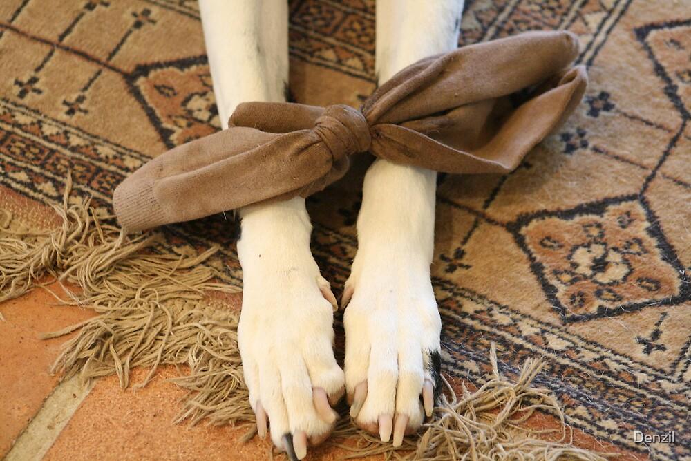 Socky by Denzil