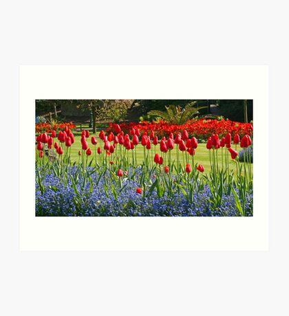 Tulip Mania Art Print