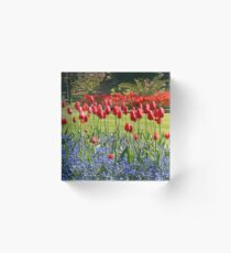 Tulip Mania Acrylic Block