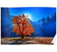 landscape autumn Poster