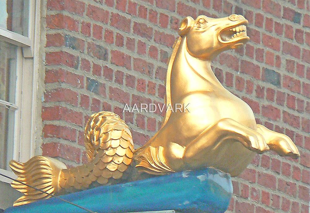 Sea Horse by AARDVARK