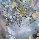 Rock Pool by Val Spayne