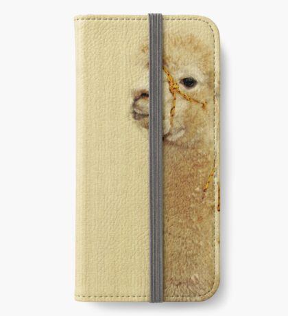Porträt von zwei Alpakas iPhone Flip-Case