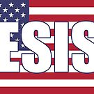 Resist Protest Products (U.S. Flag) by Mark Podger