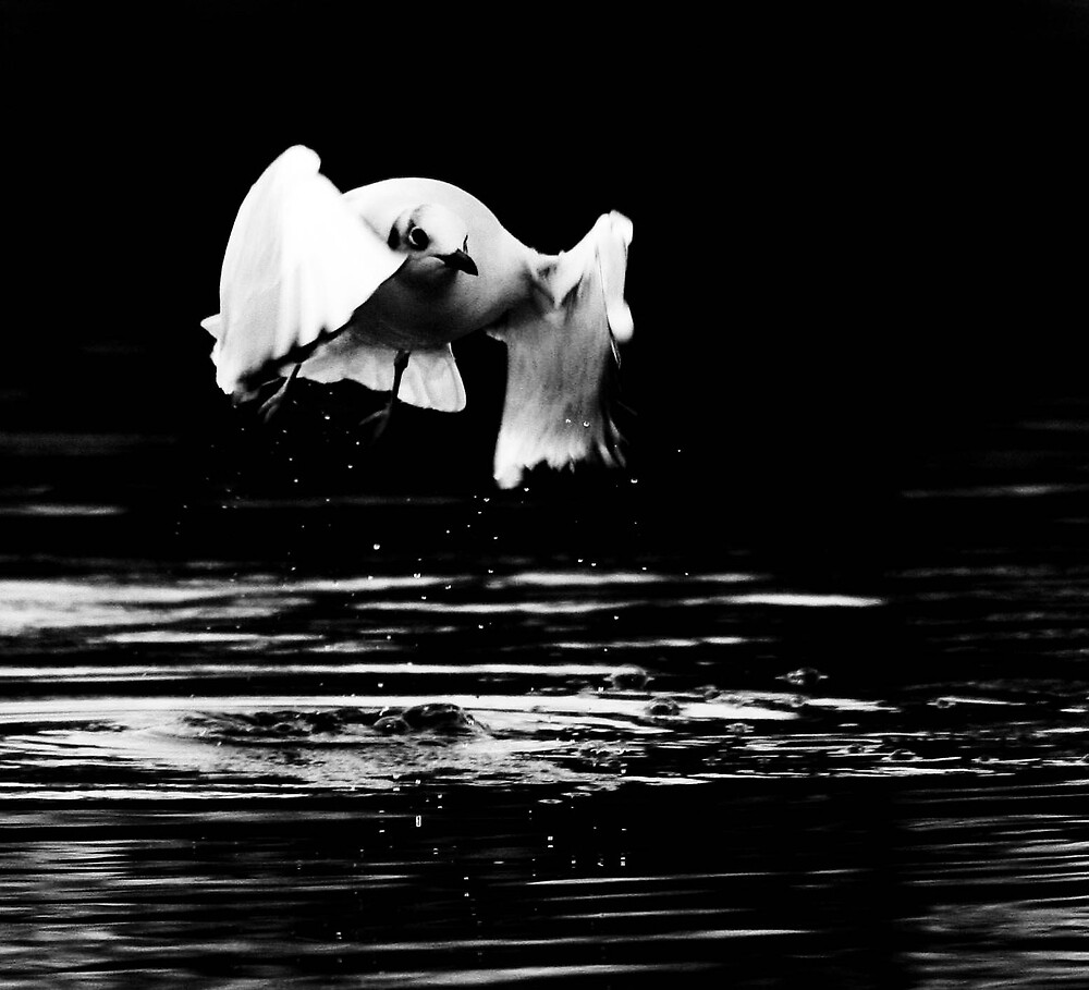 Out Of The Black by KarenMcWhirter