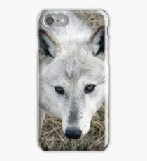 Stalk iPhone Case/Skin
