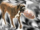 See.. It's Not  *That* BIG  - Boxer Dogs Series by Evita