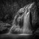 Hidden In The Jungle Of Guatemala (B/W) by Jola Martysz