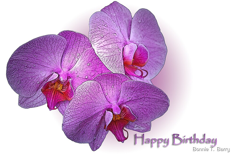 Quot Happy Birthday Orchids Quot By Bonnie T Barry Redbubble