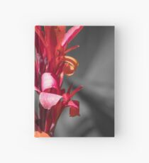Lily Hardcover Journal