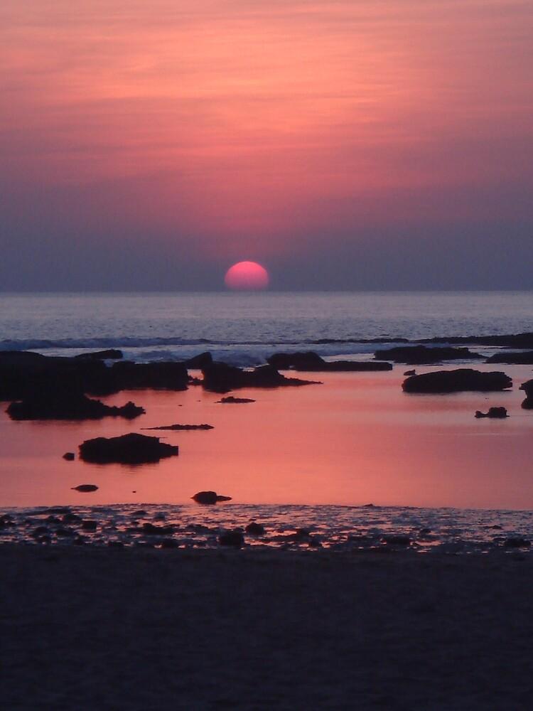 Sun Spilt by Roni Wilkes