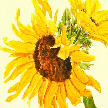 sunflower watercolor painting macro by ColorandColor
