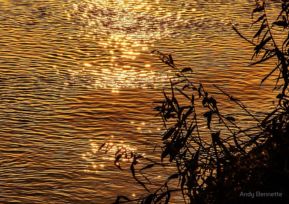 Ripples of Sun by Andy Bennette