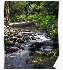 ~ Groom River ~ Poster